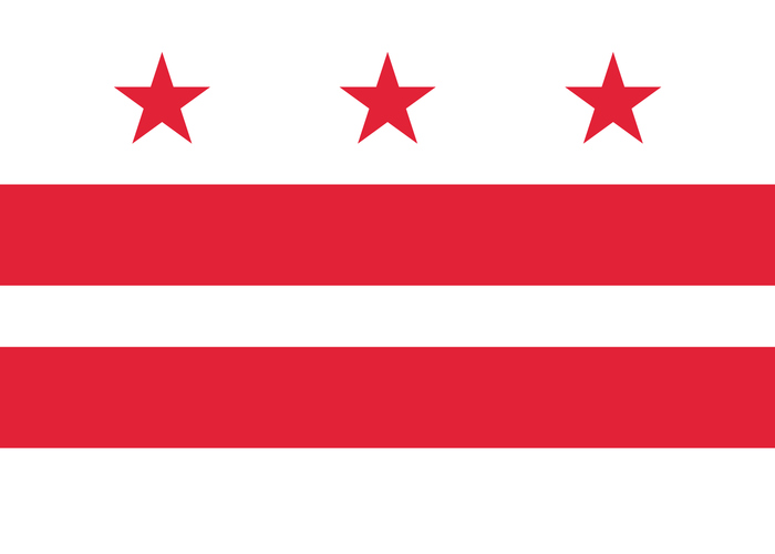 Zane Networks LLC Flag Washington DC